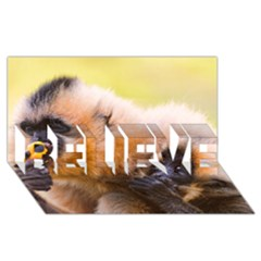 Two Monkeys Believe 3d Greeting Card (8x4)