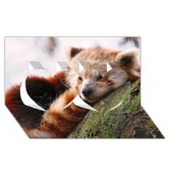 Red Panda Twin Hearts 3d Greeting Card (8x4)  by trendistuff