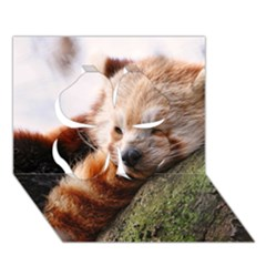 Red Panda Clover 3d Greeting Card (7x5)
