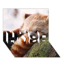 Red Panda Hope 3d Greeting Card (7x5)  by trendistuff