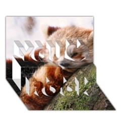 Red Panda You Rock 3d Greeting Card (7x5)