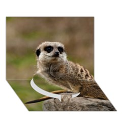 Meerkat Circle Bottom 3d Greeting Card (7x5)  by trendistuff