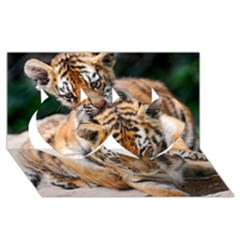 Baby Tigers Twin Hearts 3d Greeting Card (8x4)  by trendistuff