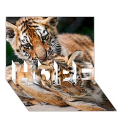 Baby Tigers Hope 3d Greeting Card (7x5)
