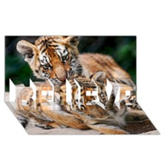 Baby Tigers Believe 3d Greeting Card (8x4)