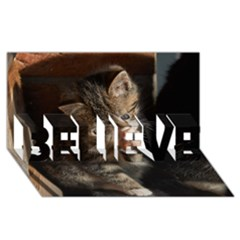 Talk To The Paw Believe 3d Greeting Card (8x4)  by trendistuff