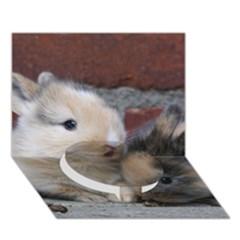 Small Baby Rabbits Circle Bottom 3d Greeting Card (7x5)