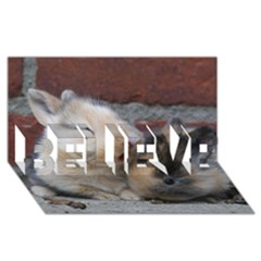 Small Baby Rabbits Believe 3d Greeting Card (8x4)