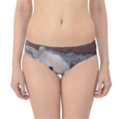 Small Baby Rabbits Hipster Bikini Bottoms by trendistuff