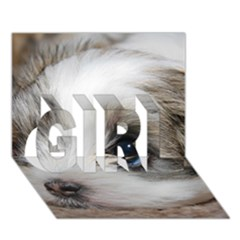 Sad Puppy Girl 3d Greeting Card (7x5)