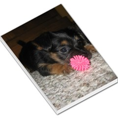 Puppy With A Chew Toy Large Memo Pads