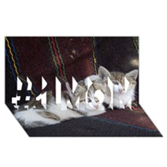 Kitty Twins #1 Mom 3d Greeting Cards (8x4)