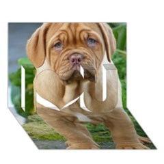 Cute Wrinkly Puppy I Love You 3d Greeting Card (7x5)  by trendistuff