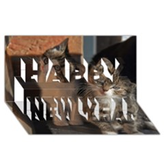 Cute Kitties Happy New Year 3d Greeting Card (8x4)