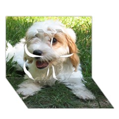 Cute Cavapoo Puppy Clover 3d Greeting Card (7x5)