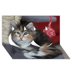 Comfy Kitty Twin Hearts 3d Greeting Card (8x4)
