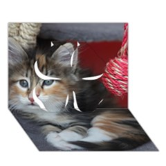Comfy Kitty Clover 3d Greeting Card (7x5)