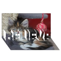 Comfy Kitty Believe 3d Greeting Card (8x4)  by trendistuff