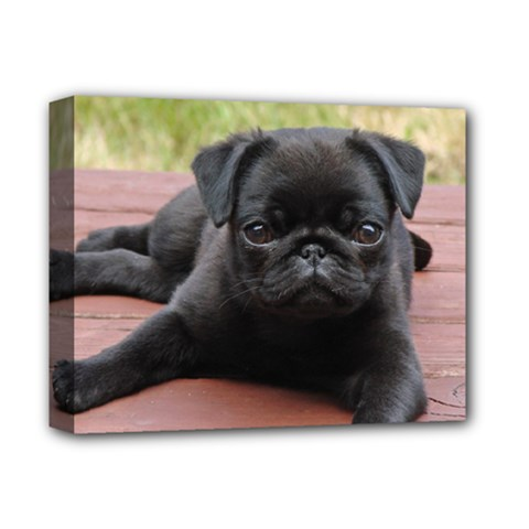 Alert Pug Puppy Deluxe Canvas 14  X 11  by trendistuff