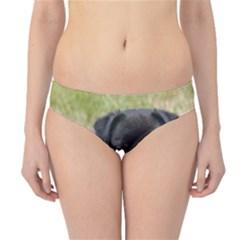 Alert Pug Puppy Hipster Bikini Bottoms by trendistuff