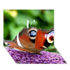 Peacock Butterfly Apple 3d Greeting Card (7x5)  by trendistuff