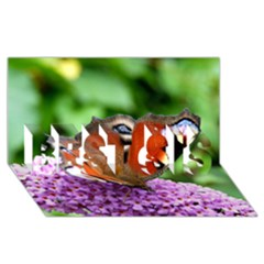 Peacock Butterfly Best Sis 3d Greeting Card (8x4)