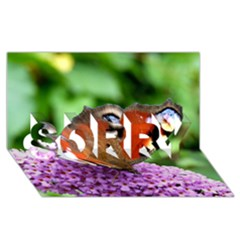 Peacock Butterfly Sorry 3d Greeting Card (8x4)