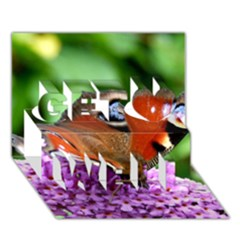 Peacock Butterfly Get Well 3d Greeting Card (7x5)  by trendistuff
