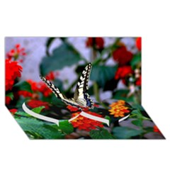 Butterfly Flowers 1 Twin Heart Bottom 3d Greeting Card (8x4)