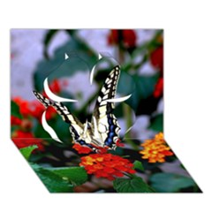Butterfly Flowers 1 Clover 3d Greeting Card (7x5)  by trendistuff