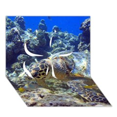 Sea Turtle Clover 3d Greeting Card (7x5)  by trendistuff