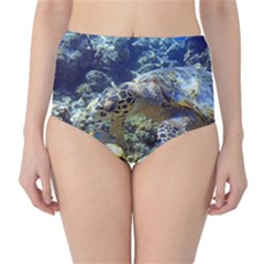 SEA TURTLE High-Waist Bikini Bottoms by trendistuff