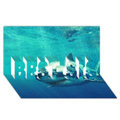 Great White Shark 1 Best Sis 3d Greeting Card (8x4)