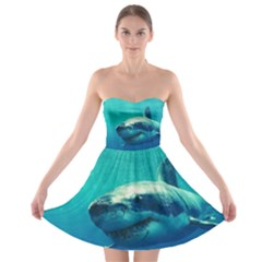 GREAT WHITE SHARK 1 Strapless Bra Top Dress by trendistuff