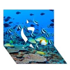 Fr Frigate Shoals Ribbon 3d Greeting Card (7x5)  by trendistuff