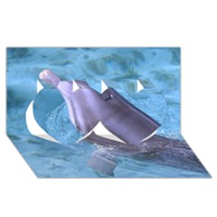 Dolphin 2 Twin Hearts 3d Greeting Card (8x4)