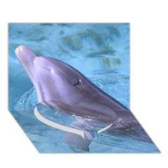 Dolphin 2 Heart Bottom 3d Greeting Card (7x5)  by trendistuff