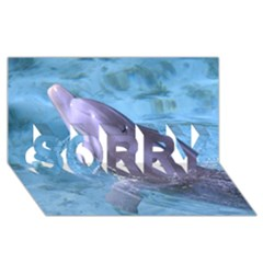 Dolphin 2 Sorry 3d Greeting Card (8x4)