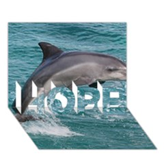 Dolphin Hope 3d Greeting Card (7x5)