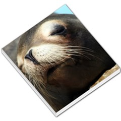 Cute Sea Lion Small Memo Pads by trendistuff