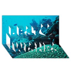 Coral Reefs 2 Best Wish 3d Greeting Card (8x4)