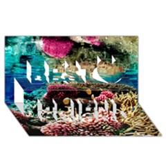 Coral Reefs 1 Best Friends 3d Greeting Card (8x4)