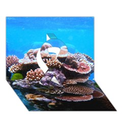 Coral Outcrop 2 Ribbon 3d Greeting Card (7x5)  by trendistuff