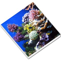 Coral Outcrop 1 Small Memo Pads