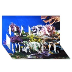 Coral Outcrop 1 Happy New Year 3d Greeting Card (8x4)  by trendistuff