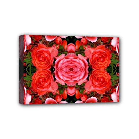 Beautiful Red Roses Mini Canvas 6  X 4