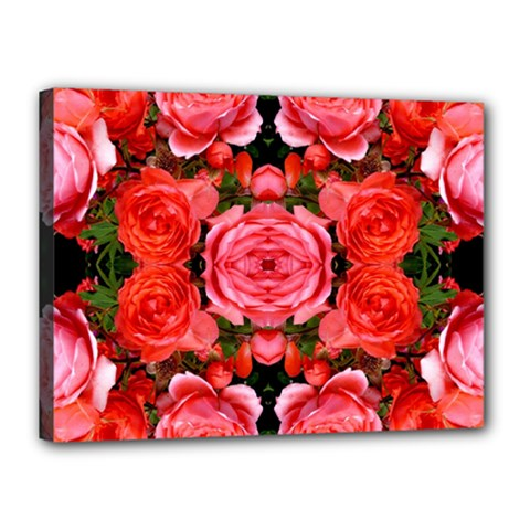 Beautiful Red Roses Canvas 16  X 12  by Costasonlineshop