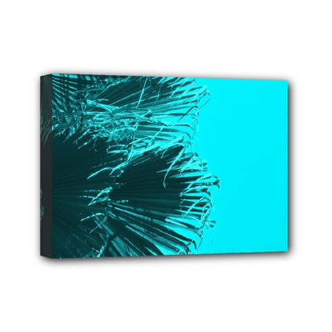 Modern Palm Leaves Mini Canvas 7  X 5  by timelessartoncanvas