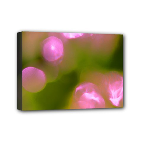Pink And Green Circles Mini Canvas 7  X 5  by timelessartoncanvas