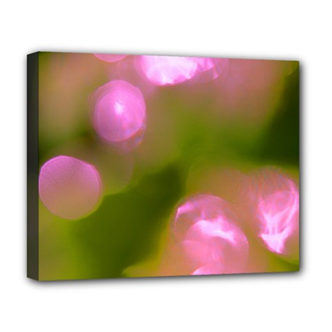 Pink And Green Circles Deluxe Canvas 20  X 16   by timelessartoncanvas
